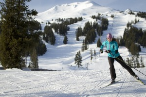 Cross country ski 4